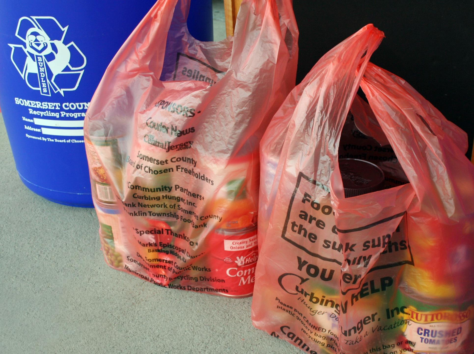 Curbing Hunger Orange Bags