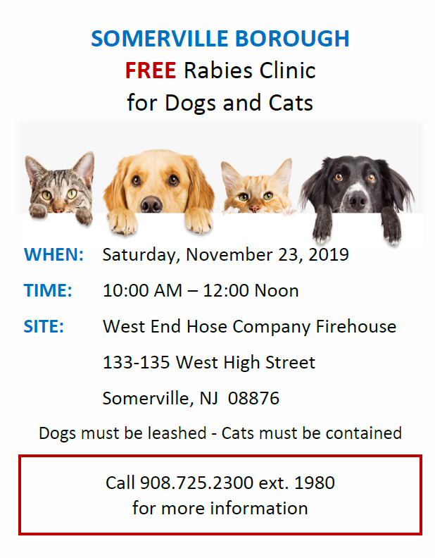 rabies clinic somerville