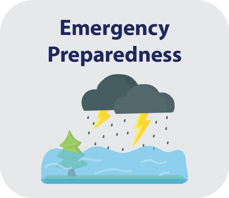 Preparedness Icon