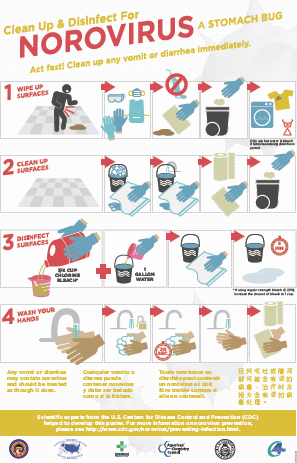 norovirus cleanup